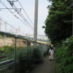 飛鳥の小径 あじさい 京浜東北線